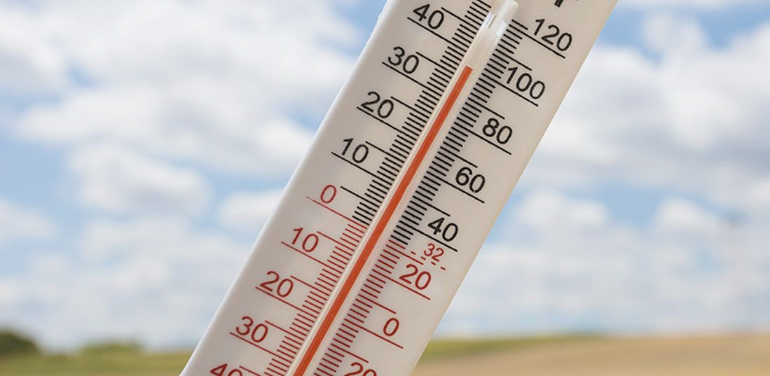 What Is the Average Temperature For Humans?